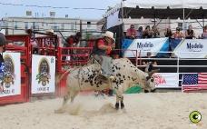 1er Rodeo Festival Circuito Delicias de Minas 2018_5